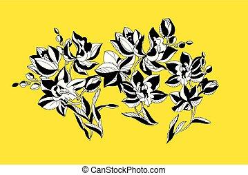 decorativo, fiori, disegno, element., orchidea