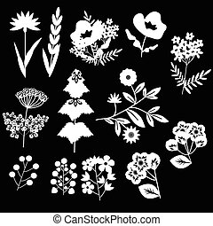 decorativo, fiori, set