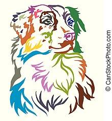 decorativo, pastor, coloridos, cão, ilustração, vetorial, retrato, australiano