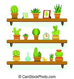 decorativo, plantas, conjunto, shelves., ollas, aislar, cactus, fondo., vector, estante, ilustraciones, blanco