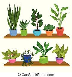 decorativo, plantas, interior, natural, estantes, de madera, cerámico, houseplants., dos, plano, vector, diseño, hogar, vario, pots., decor., elementos
