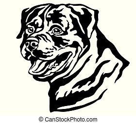 decorativo, rottweiler, cane, illustrazione, vettore, ritratto