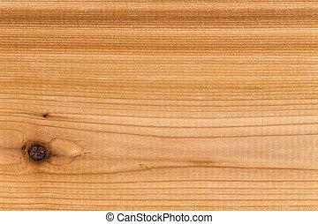 decorativo, solido, singolo, legno, cedro, pannello
