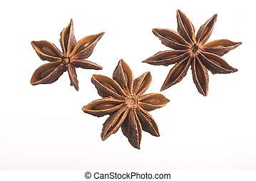 decorazione, anice, stella, fragranza