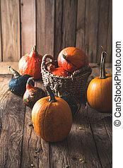 decorazione, zucche, tavola., ringraziamento, varietà