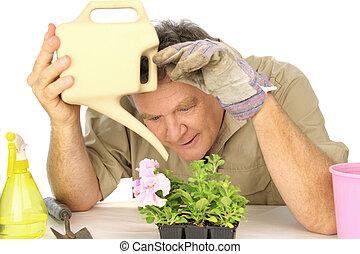 Dedicated Gardener - Dedicated gardener watering his beloved...