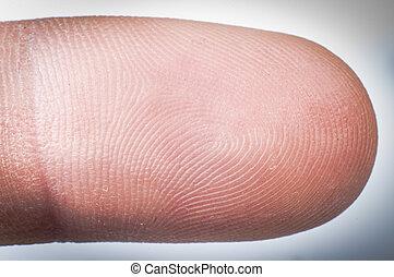 dedo, human, cima