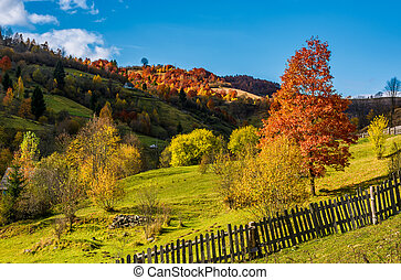 deep autumn sunny day in mountainous rural are. beautiful...