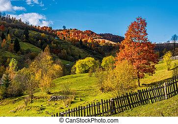 deep autumn sunny day in mountainous rural are. beautiful...