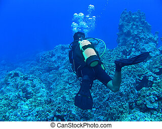 Deep blue diving - A scuba diver is so deep the only color...