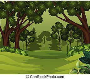Deep forest scene with trees background