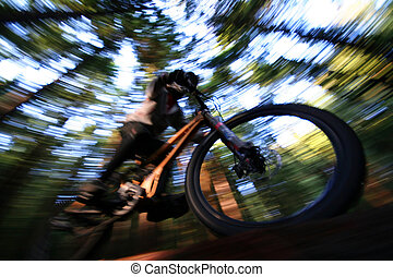 Deep Forest - A heavily blurred mountain biker on a trail in...