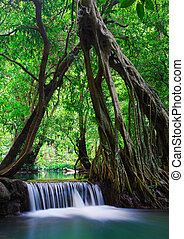 Deep forest Waterfall in Krabi, Thailand