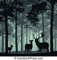 Deep forest with deer, doe and fawn