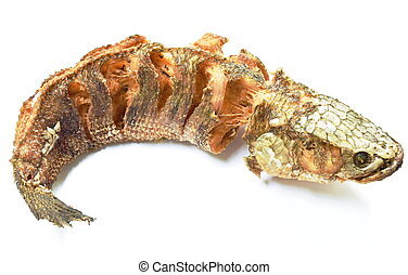 deep fried striped snake head fish with salt on white background
