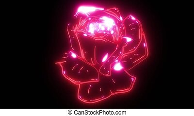 Deep red, ruby rose flower video animation - Deep red, ruby...