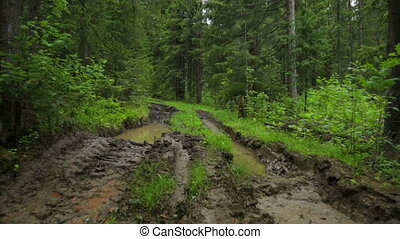 deep-rutted, лето, дорога, лес