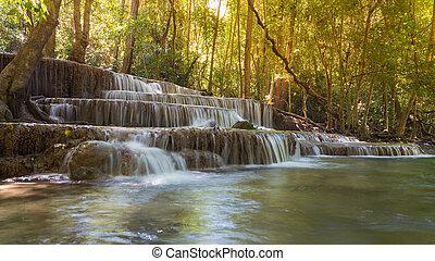 Deep tropical rain forest waterfall