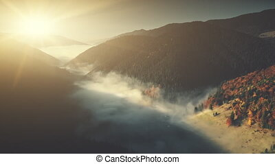 Deep wild wood mountain foggy slope aerial view - Deep Wild...