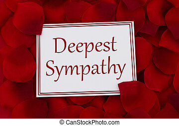 Deepest Sympathy Card, A white card with text Deepest Sympathy and a red rose petal backgrounds