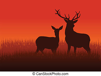 Deer and Doe - Silhouette illustration of a deer and doe on...
