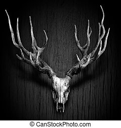 Deer Antler hang on Wood Panel in Black and White