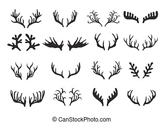 Deer antlers set isolated on white background.