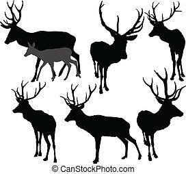deer collection vector