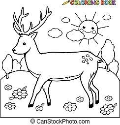 Deer coloring book page