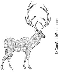 Deer coloring book vector for adults