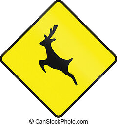 Deer Crossing In Ireland