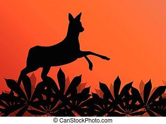 Deer doe in grass field background