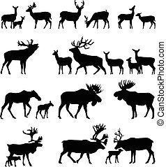 Deer family - Collection of silhouettes of wild animals -...