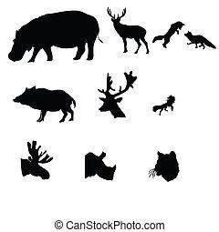 deer, fox, moose, wild boar, wolf, rhinoceros