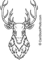 Deer head illustration, drawing, engraving, ink, line art