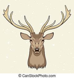 Deer head, vector illustration