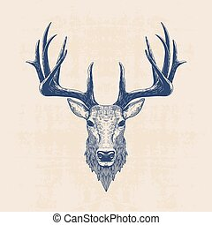 deer head, vintage hand drawn illustration