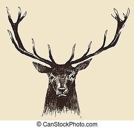 Deer Head Vintage Illustration, Hand Drawn, Vector - Deer...