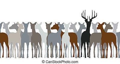 Deer herd - Editable vector silhouette of a herd of deer