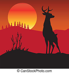 Deer, hind, savage, wood, fauna, sunset, mountain, plain,...