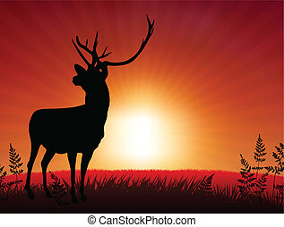 Deer ib Sunset Background Original Vector Illustration