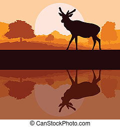 Deer in wild nature forest landscape background vector