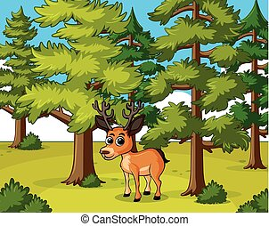 Deer living in the forest