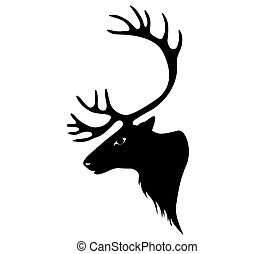 deer., ren, eller, caribou