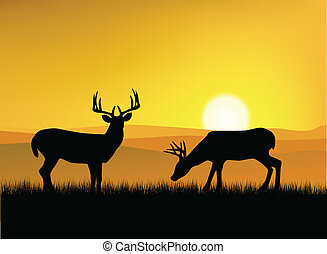 Deer silhouette with sunset background
