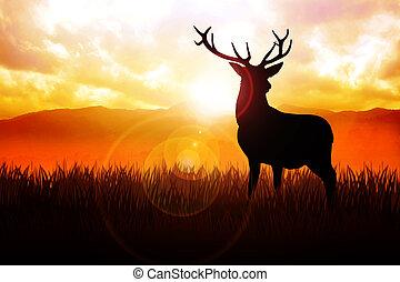 Deer - Silhouette illustration of a deer on meadow during...
