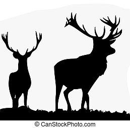 Deer  - Silhouette of two male deer or Stags