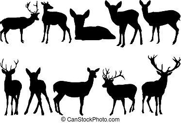 Deer Silhouette vector illustration
