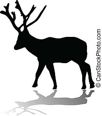 deer silhouette with shadow