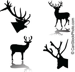 deer silhouette with shadow vector illustration isolated on ...